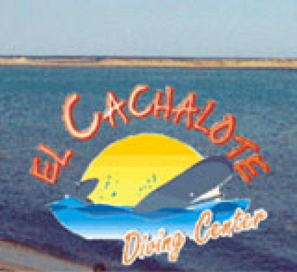 El Cachalote